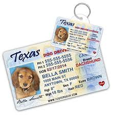Dogs Custom For Texas Pets Card Id Tags Driver Pet Cats Amazon - Supplies Personalized License Wallet Cat And Tag Dog com