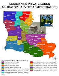 2017 Alligator Price Chart Florida Alligator Hunting Louisiana Department Of Wildlife And