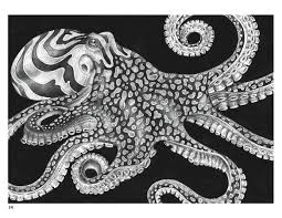 Small Picture Intricate Ink Animals in Detail Coloring Book
