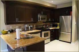 Rustoleum Kitchen Cabinet Kitchen Cabi Refinishing Kit How To Stain Oak Cabisthe Rustoleum