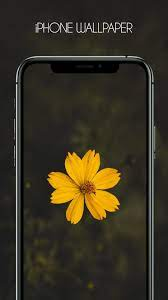 iPhone 12, Ios 14,Live Wallpaper ...