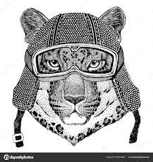 эмблема черная пантера дикая кошка Leopard кошка O гора пантера