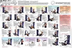 Multi Station Home Gym Exercise Chart Weider Home Gym Exercise Chart Gym Workout Chart Work Out