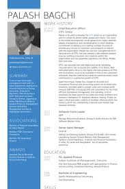 Chief Executive Officer Resume samples