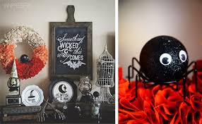 cute little spooky spider display from whipperberry