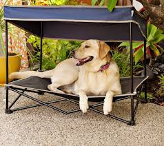 outdoor raised dog bed with canopy
