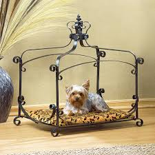 furniture dog bed. amazoncom royal splendor pet metal canopy bed small dog cat puppy by furniture creations iron supplies
