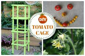 Diy tomato cage Wood How To Make Tomato Cages From Wood Empress Of Dirt How To Make Tomato Cages From Wood Empress Of Dirt