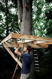 Amusing Tree House Plans For Adults Images  Best Idea Home Design How To Build A Treehouse For Adults