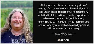 Erich Schiffmann Quote Stillness Is Not The Absence Or Negation Of Gorgeous Stillness Quotes