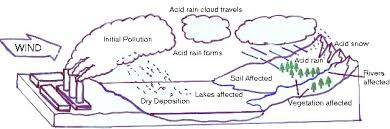 other acid rain essays acid rain causes effects and solutions this picture shows the total effects of a factory polluting the air through these steps
