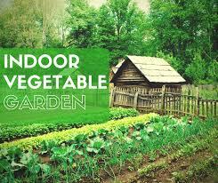 indoor vegetable gardening 37 edibles you can grow indoors in the winter