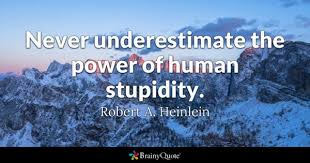 Stupid Funny Quotes Delectable Stupidity Quotes BrainyQuote