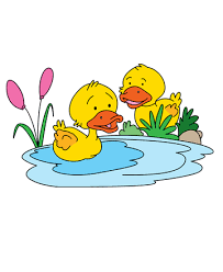 Small Picture Baby Duck Coloring Pages for Kids to Color and Print