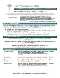 Entry Level Customer Service Resume Objective Examples It Template