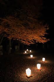 lighting in gardens. japanese garden lights lighting in gardens