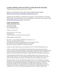 Federal Government Resume Writing Service Updated Government Resume