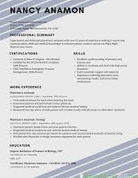 Example Resume Format Nice Recommended Sample Interesting Fo