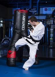 <b>Мешок боксерский Century VERSYS</b> 3 VS.3 Fight Simulator купить ...