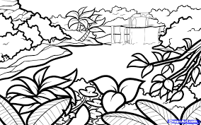 book simple drawing of peony page kids play 1400x875 drawn nature beautiful easy nature