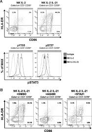 Il 21induced Mhc Class Ii Nk Cells Promote The Expansion Of Human