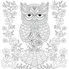 Groovy Owls Coloring Book By Com Lady Owl Coloring Page By Coloring