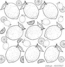 レモン 手描きの線画のイラスト素材 40353927 Pixta