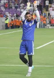 أحمد الشناوي - ويكيبيديا