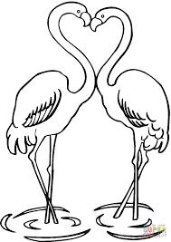 Kleurplaten Flamingos Google Zoeken Diy Kleurplaten Flamingo