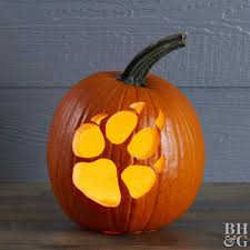 Animal Pumpkin Carving Patterns