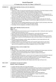 Corporate Real Estate Director Resume Examples Sales Manager