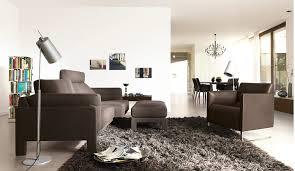 image of living room rugs target