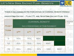 Lic New Bima Gold Policy Chart New Bima Bachat Plan Review Investinsure Financial Planners