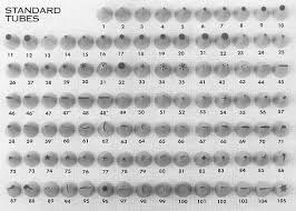Wilton Tip Chart Printable There Are Not Many Images For What Tips In The 50s Range