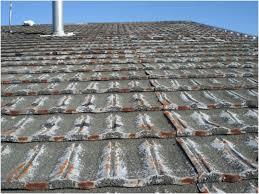 concrete tile roof paint the best option decramastic roof tiles christchurch roof painting