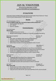 New Resume Objective Or Summary General Resume Summary New Resume