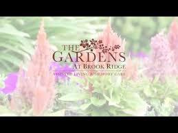 gardens at brook ridge best senior care amenities for pharr mcallen texas