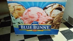 Ice Cream Server Commercial Grade Blue Bunny Ice Cream Server Holds Maximum Quantity