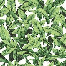 palm leaf design wallpaper green 20