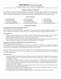 Club Security Officer Sample Resume Classy Security Guard Resume Skills Ideal Sample Security Resume Cover