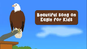 Small Picture Beautiful song on Eagle for Kids YouTube