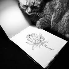 добрые татуировки 365 растений и один котик Adopt Dont Stop
