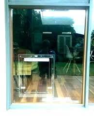 pet glass door sliding pet door glass insert glass dog door installation perth pet glass door
