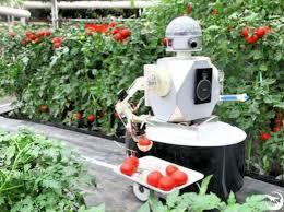 「農場自動化」的圖片搜尋結果