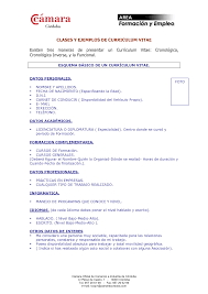 10 Best Images Of Modelo De Curriculum Vitae Basico Modelo De