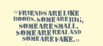 Cute Friendship Quotes Friendship Quotes Friendship Quotes Best