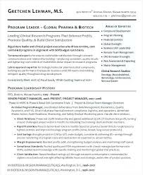 It Program Manager Resume Sample Clinical Executive Resume Program ...