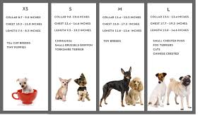Small Dog Breeds Chart List Dog Breeders Guide