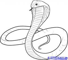 King Cobra Coloring Pages Kids Cooloring intended for King Cobra ...