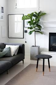 On How To Decorate A Small Living Room 17 Best Ideas About Living Room Plants On Pinterest Plant Decor